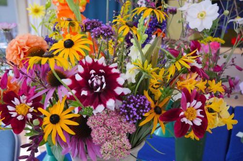 RGHC flowers 1 WEB 2-9-17