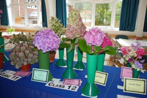 RGHC flowers 3 WEB 2-9-17