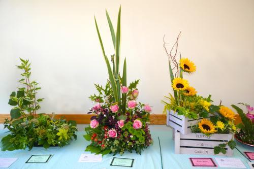 RGHC flowers 8 WEB 2-9-17
